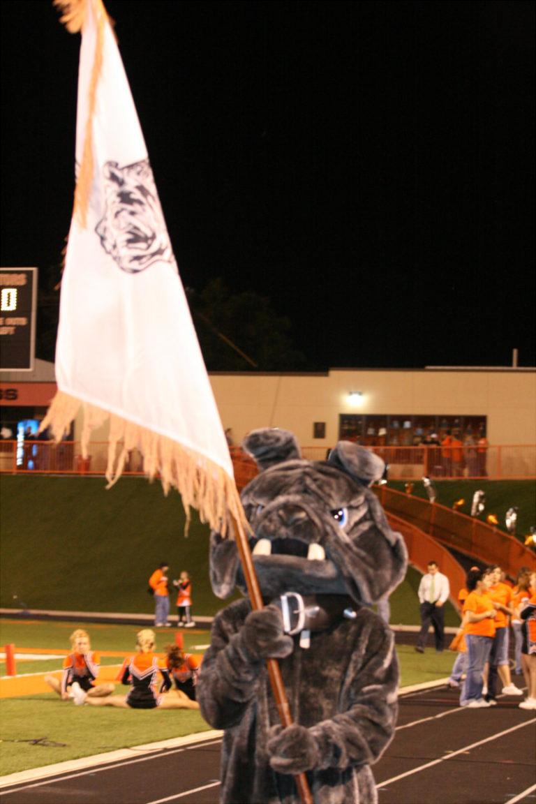 mascot flag